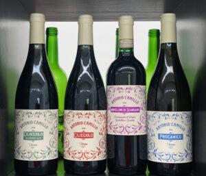 I vini di Antonio Camillo