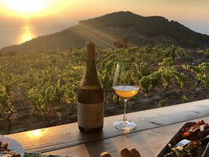 vino-cibo-isola-del-giglio